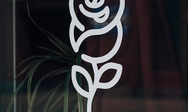 Dear Friend Arrives and Other Openings
